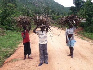 Children carrying firewood home (Source: Ecofinder Kenya)